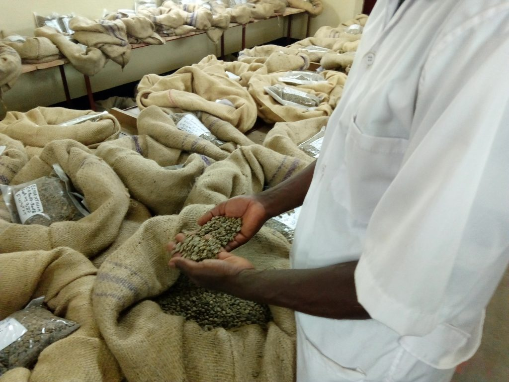 Coffee quality control Burundi